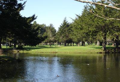 Buea Pre Golf, McKinleyville, CA