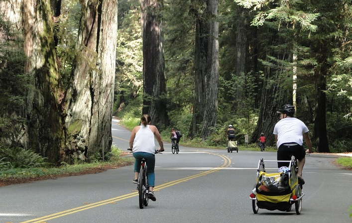 Redwood National Park Bike Day